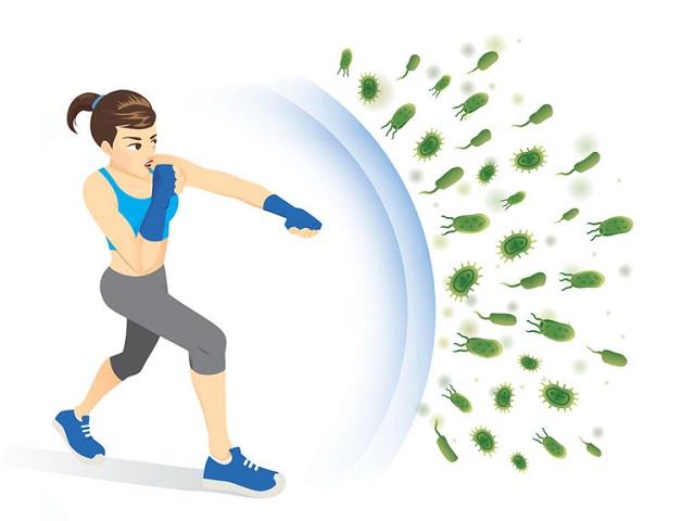 Hệ miễn dịch tạo ra rào chắn để ngăn virus xâm nhập vào cơ thể.
