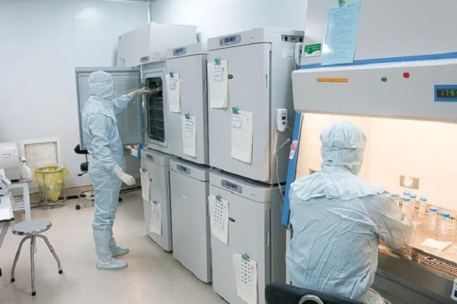 Nuôi ghép tế bào NK, tế bào T trong phòng thí nghiệm. Nguồn: Internet