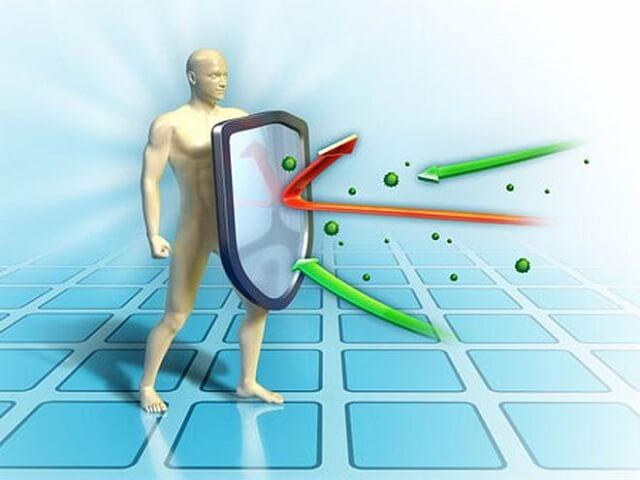 Vai trò của hệ miễn dịch