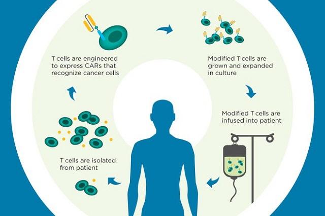 Liệu pháp tăng cường hệ miễn dịch tự thân giúp tăng khả năng miễn dịch. Nguồn: Internet