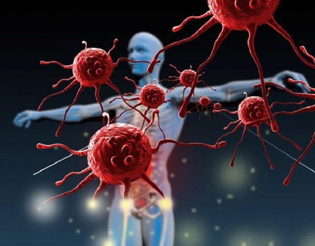 Mối liên hệ giữa hệ miễn dịch và ung thư. Nguồn: Internet